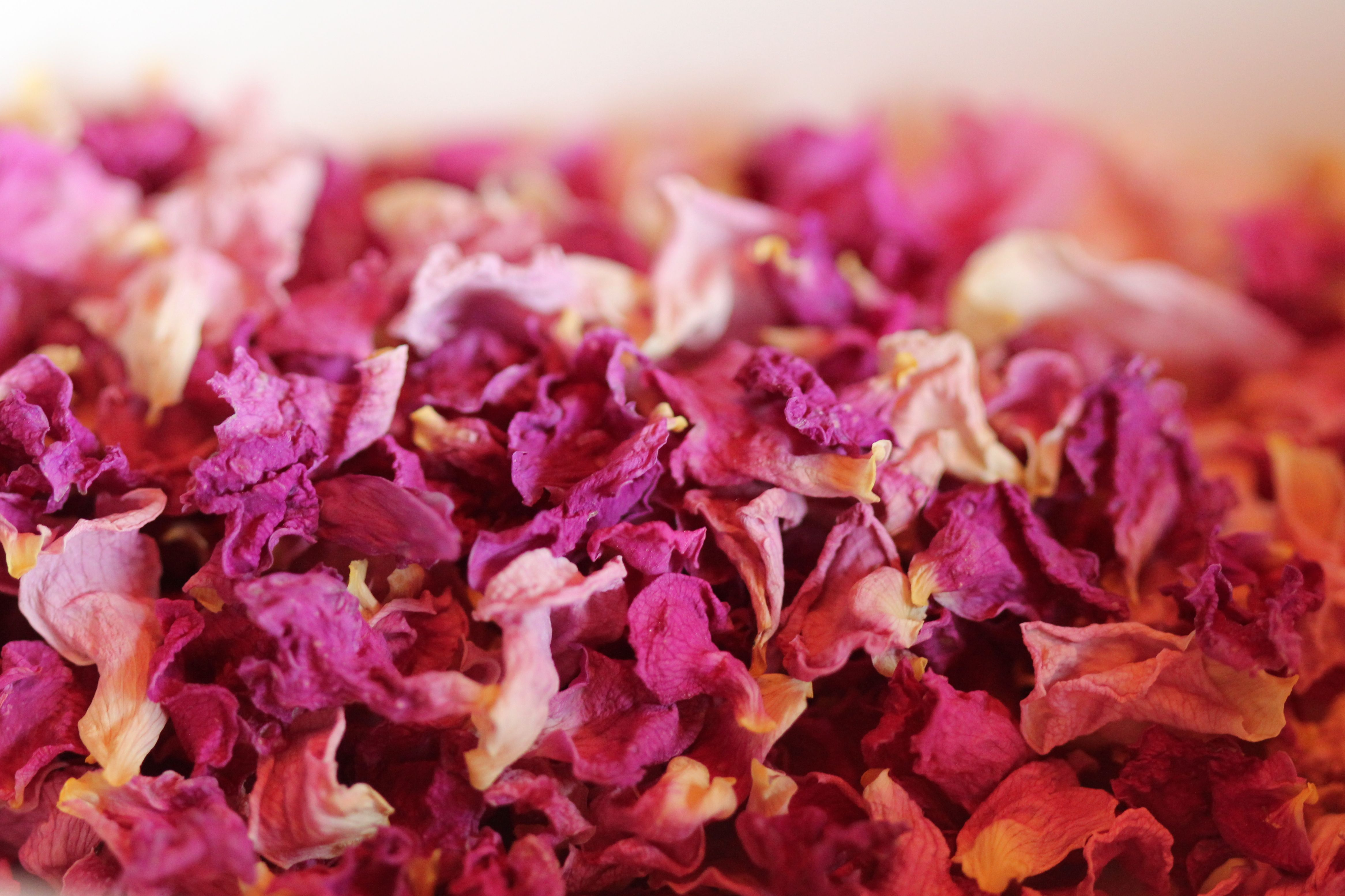 cooking with rose petals