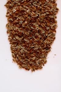 Dill Tea Cabinorganic