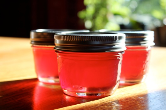 chokecherry jelly3