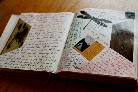 creativity journal2