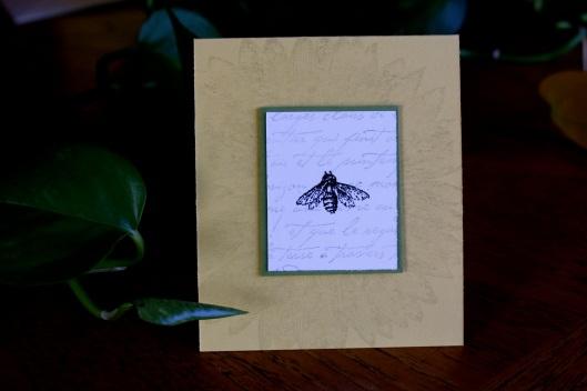 spring card2