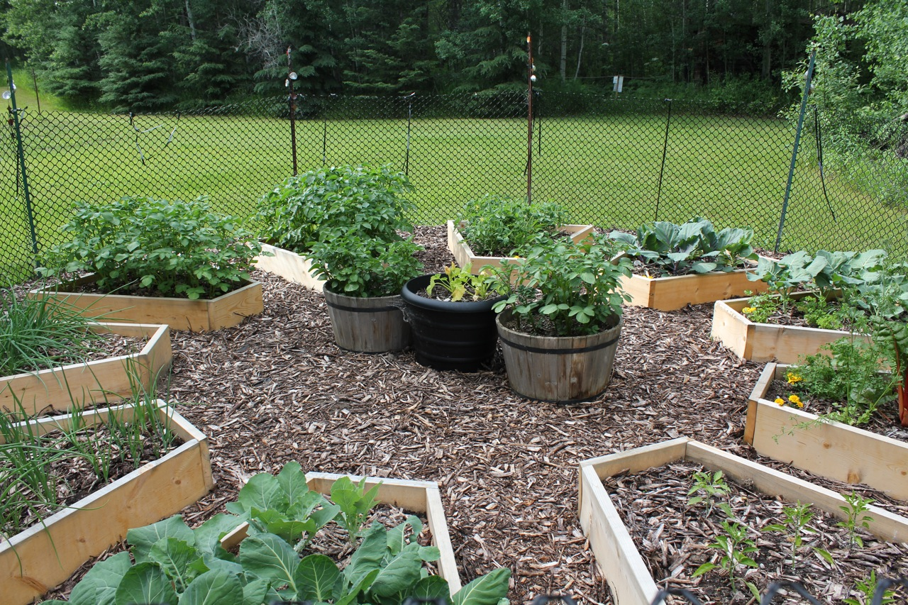 More details on building the raised beds in the medicine for Raised vegetable garden