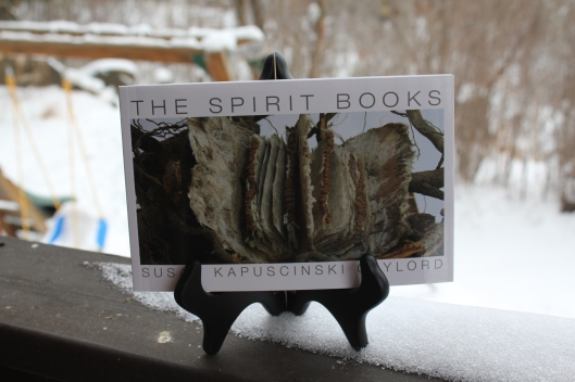 The Spirit Books